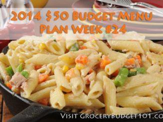 2014 50 budget menu plan week 24 attachment