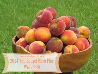 2014 $50 Budget Menu Plan Week #29