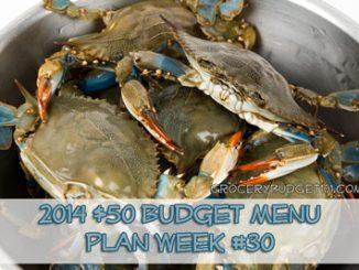 2014 50 budget menu plan week 30 attachment