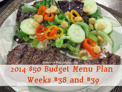 2014-50-budget-menu-plan-weeks-38-and-39