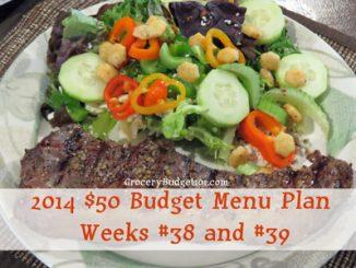 2014 $50 Budget Menu Plan Weeks #38 and #39