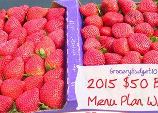 2015 50 budget menu plan week 7 attachment