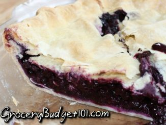 5ca3791697263 blueberry pie attachment