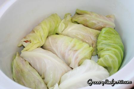cabbage-rolls