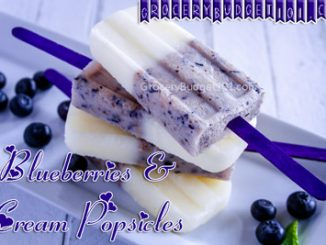 blueberry vanilla coconut cream popsicles attachment