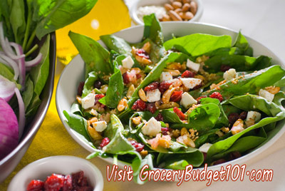 cranberry-spinach-salad