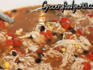 Southeastern Chicken Stew